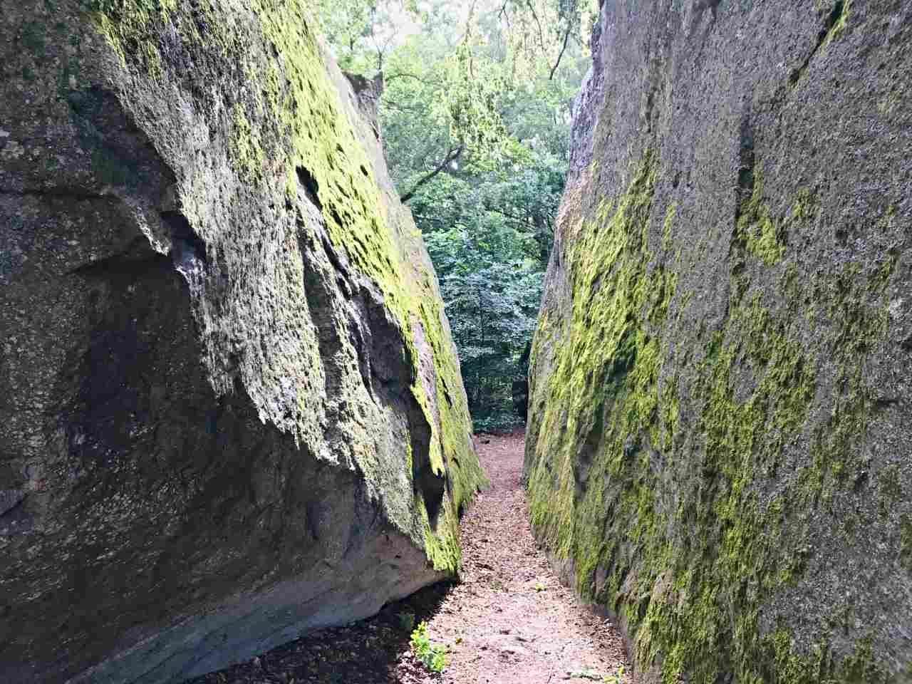 Kjugekull: vandra bland gigantiska stenar vid Ivösjön